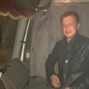 Денис, 36 лет, Черняховск