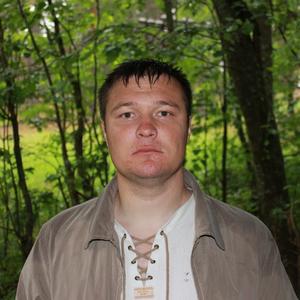 Денис, 37 лет, Петергоф