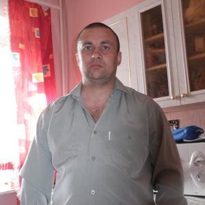 Евгений, 44 года, Вельск